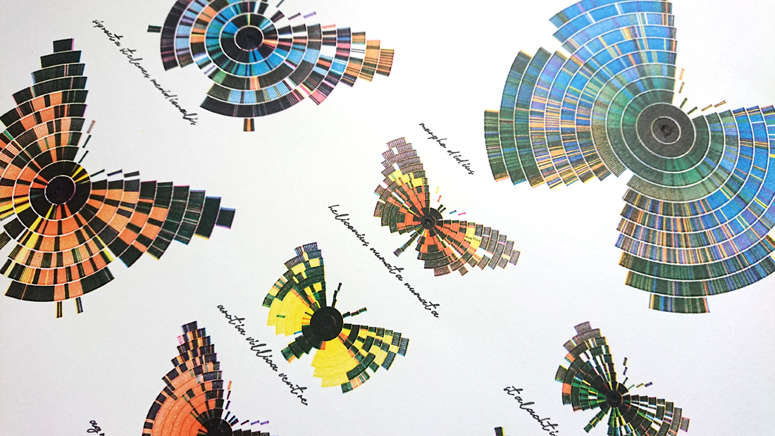 composition of butterflies in 1:1 scale - detail